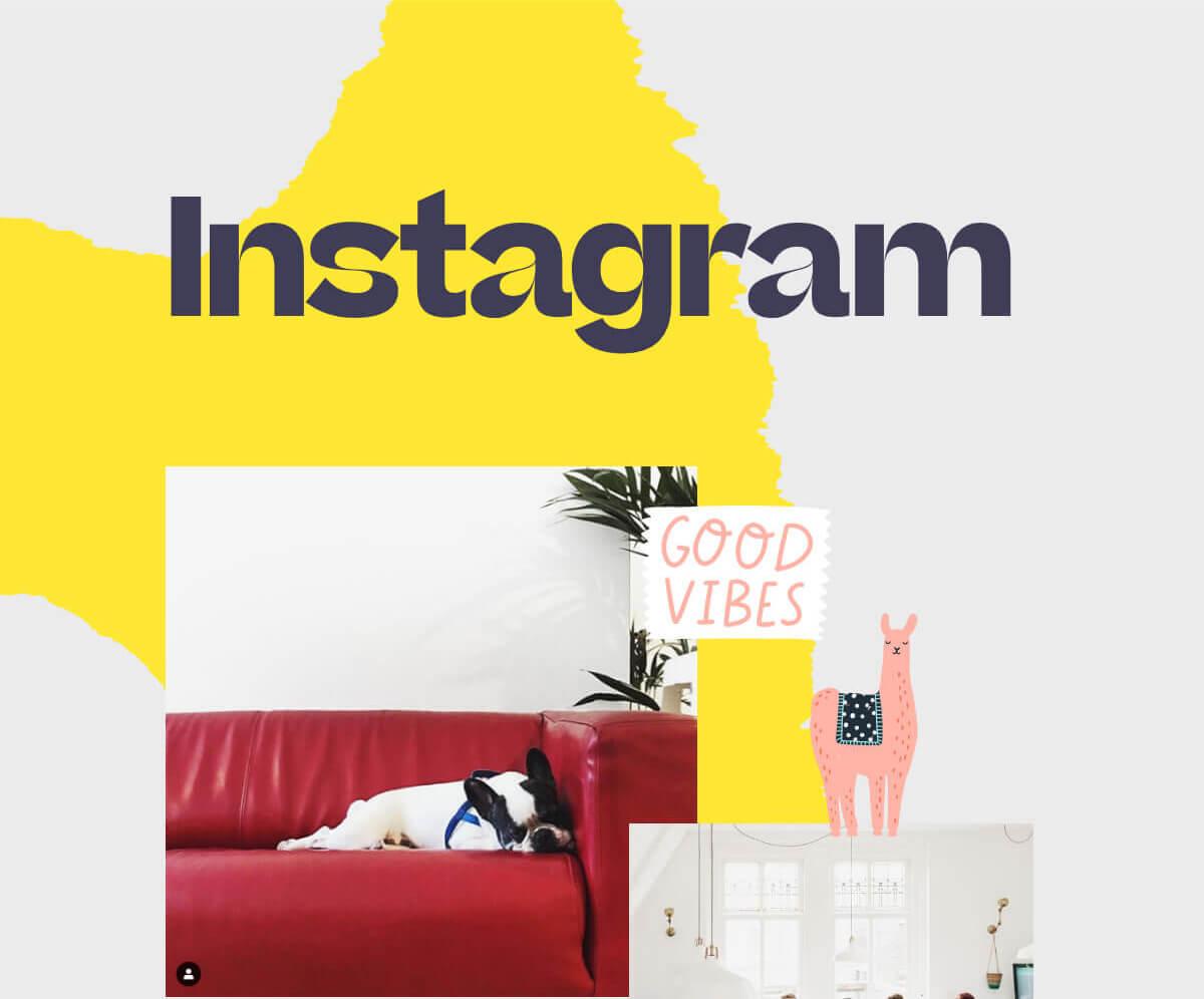 Instagram @dpdk_digital