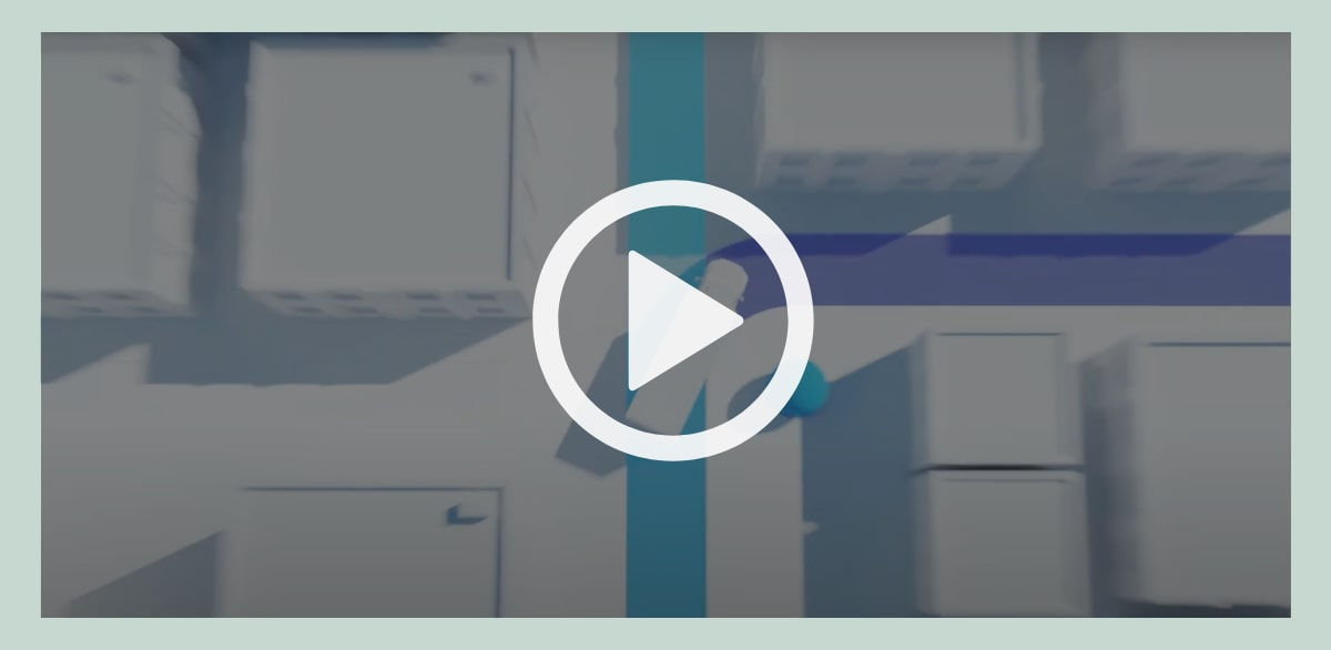 Link to Rosco's Logo video